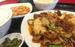 【池袋でサラリーマンの味方!】永利西口店のモリモリ中華ランチはコスパ最高!